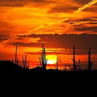 sonora-coucher-soleil-desert-mexique